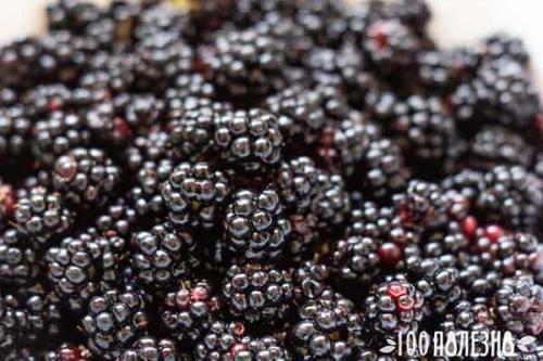 Ежевичное варенье полезные свойства. Ежевика: польза целебной ягоды и ее сила