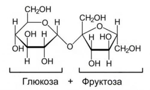 Хитин функции в биологии. Олигосахариды